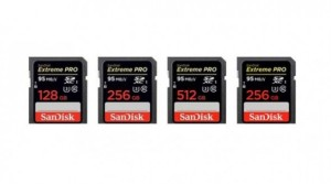 sandisk_sd_cards_512GB-senforum